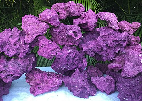 Premium Real Reef Live Rock Purple Coraline Marine Saltwater Aquarium