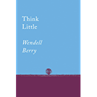 Think Little: Essays (Counterpoints Series)