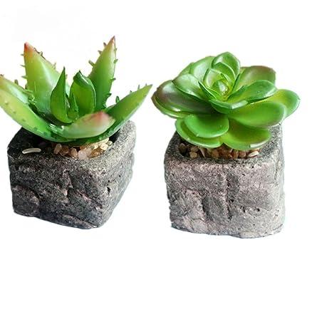 Yocome artificiale plastica verde finte piante grasse per ...