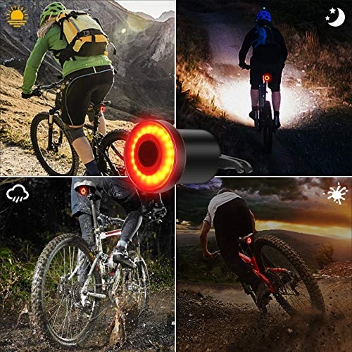 Ultra Bright Bike Light USB Rechargeable Bicycle Tail Light High Intensity Rear