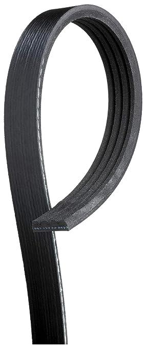 Gates K050532 Multi V-Groove Belt