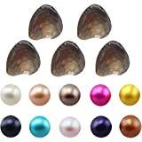 Wholesale Freshwater Cultured Love Wish Pearl Oyster Round Pearls Various 10 Shining Meaningful Color, Oysters with Pearls Inside (7-8mm, 10 PCs/lot)