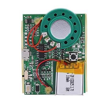 Tihebeyan Módulo de música USB, Módulo de grabación de Voz ...