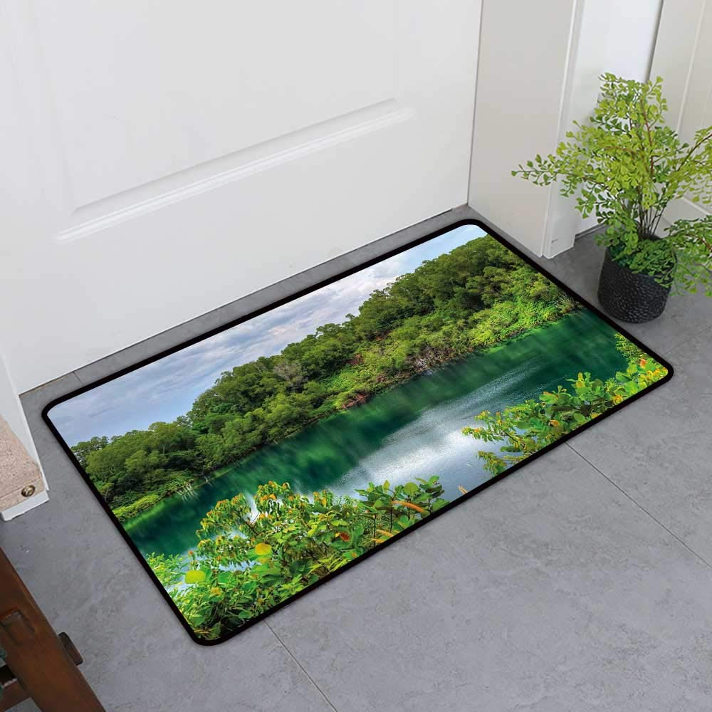 Custom&blanket Pet Mat Machine Washable, Forest Non-Slip Mats for Living Room, Pulau Ubin Singapore Lagoon Tropical Climate Rainforest Freshness Growth Lush (Green Pale Blue, H36 x W60)