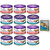 Bundle: Wellness Natural Grain Free Signature Selects Flaked Wet Cat Food Variety Pack Box - 2 Flavors (Wild Salmon & Shrimp) - 2.8 Ounces Each (12 Total Cans) with Catnip