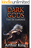 Take the darkness..: Gritty Epic Fantasy (Dark Gods Book 2)
