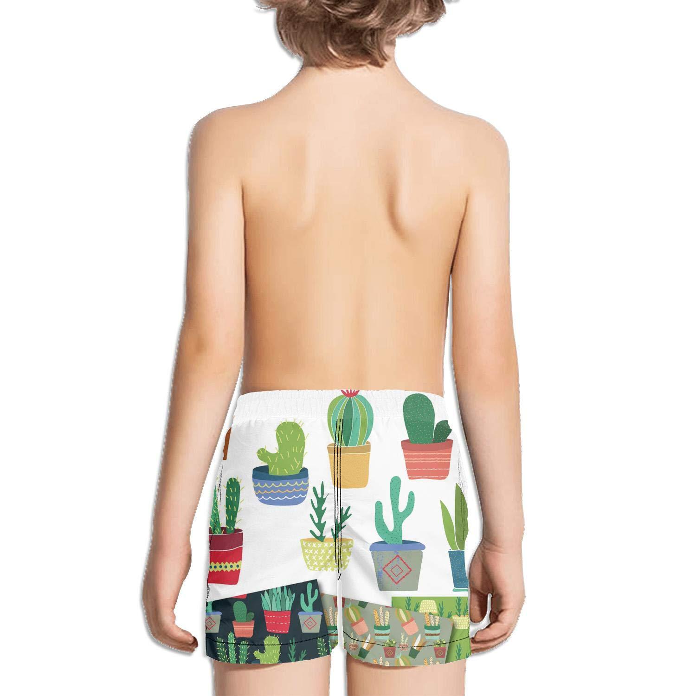 Kids Unisex Plants Cactus Illustration Art Wallpaper Beach Swim Trunks Quick Drying Drawstring Shorts