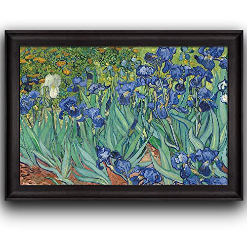 Irises by Vincent Van Gogh Oil Painting Impressionist Artist Framed Art