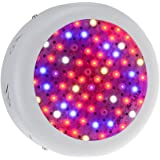 Yi-Create 200W Full Spectrum Grow Light, LED Plant Light for Hydroponics Greenhouse Cultivation Indoor Plants Growth and Flower All Phases of Plant Growth