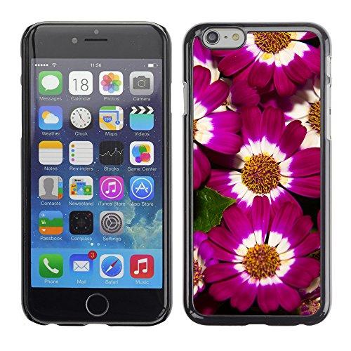 """Premio Sottile Slim Cassa Custodia Case Cover Shell // F00030092 florettes Coloruful // Apple iPhone 6 6S 6G PLUS 5.5"""""""