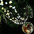 Quntis LED Curtain String Lights
