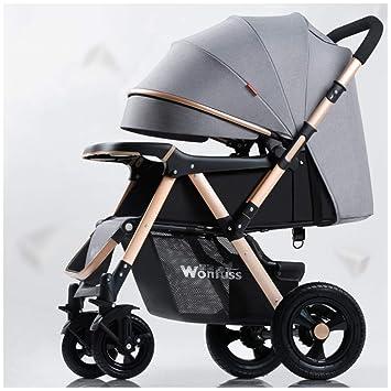 GSDZSY - Carro De Bebé Cochecito 2 En 1, El Bebé Puede Sentarse Y Acostarse