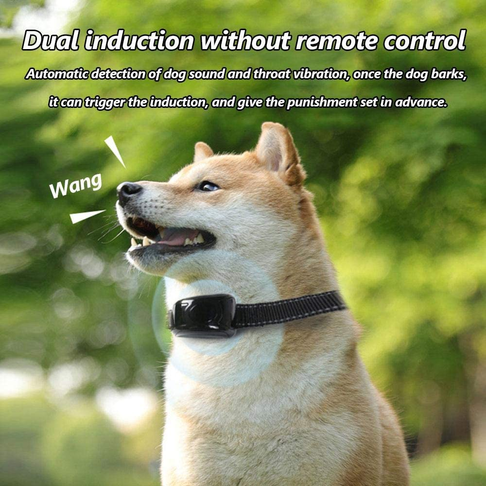 3 modalit/à di Allenamento,Allenamento Comportamentale winter Nessun Dispositivo di Controllo Dellabbaio per Cani con Telecomando Dispositivo di Controllo Dellabbaio con Collare di Ricarica USB