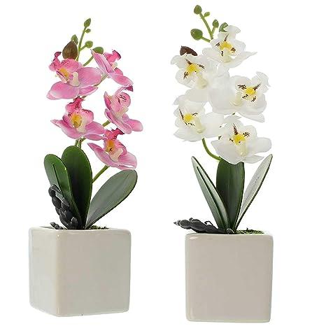 SIDCO Orchidee Kunstpflanze Blume künstlich Deko Pflanze Blüten Topfpflanze 2 er Set