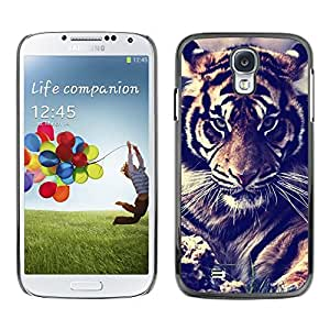 Plastic Shell Protective Case Cover || Samsung Galaxy S4 I9500 || Filter Fur Roar Big Cat @XPTECH