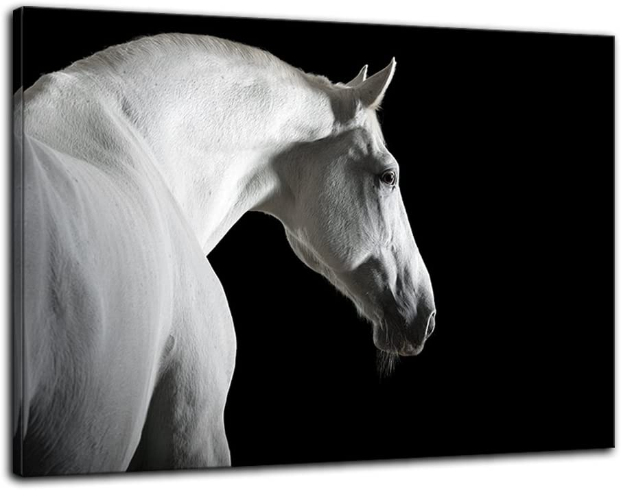 Amazon Com Amemny Black And White Horse On Black Wall Art Background Canvas Paintings On Canvas Contemporary Wall Art Giclee Framed Artwork Hd Printed Picture To Photo Decor For Living Room Home