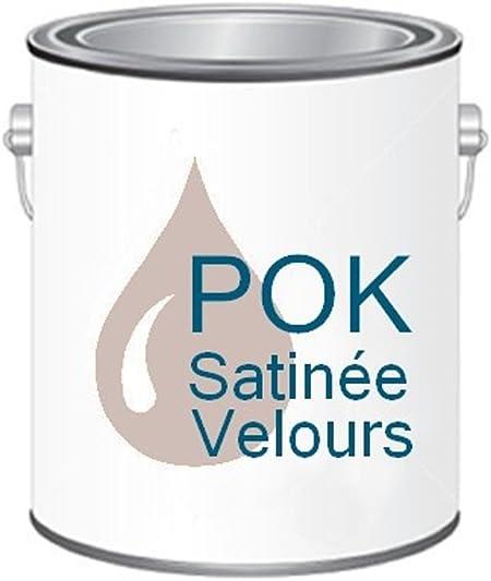 Peinture Acrylique Pour Murs Satin Lessivable Rose Poudré Pok Satin 5 L Bac Offert