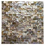 Art3d 6-Pack Colorful Mother of Pearl Shell Tile for Shower Wall, 12'' x 12'' Groutless Subway