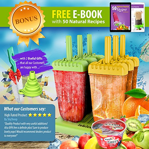 Review Popsicle Molds Set –