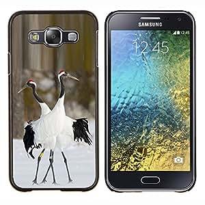 Dragon Case - FOR Samsung Galaxy E5 E500 - birds love winter nature couple valentines - Caja protectora de pl??stico duro de la cubierta Dise?¡Ào Slim Fit