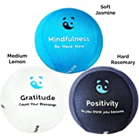 3x Mind & Body Stress Ball - AROMATHERAPY & POSITIVE QUOTES! Free mindfulness E-Book & hand Physio exercises Included.The perfect soft anti-stress relief toys for adults & kids