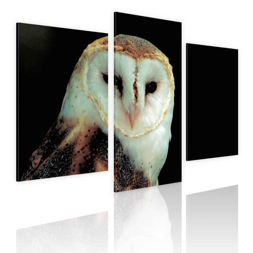 Alonline Art - Night Owl by Split 3 Panels | framed stretched canvas on a ready to hang frame - 100% cotton - gallery wrapped | 39''x26'' - 99x66cm | Wall art home decor for nursery or for office |