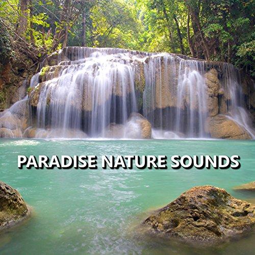 Delightful Garden Nature Sounds (Delightful Natural)