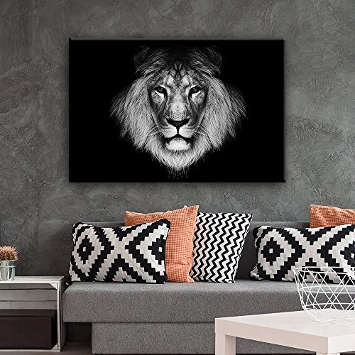 Lion Head on Black Background