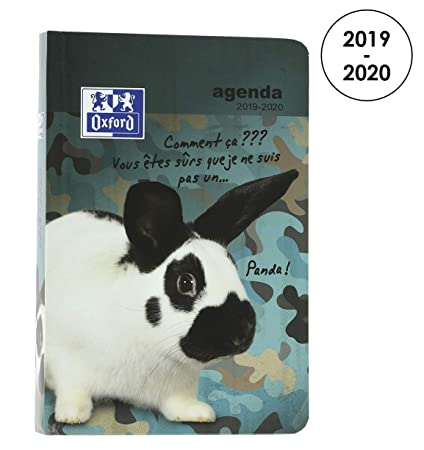 Amazon.com : Oxford Funny Pets 2019-2020 Daily School Diary ...