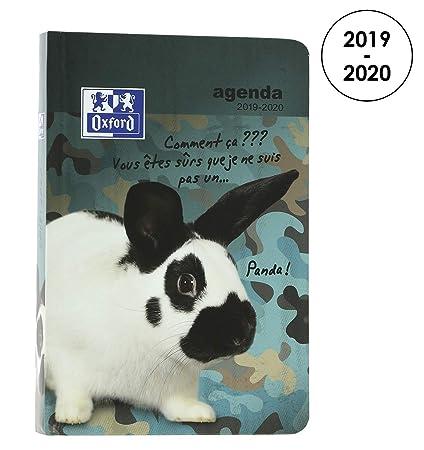Amazon.com : Oxford Funny Pets 2019-2020 Daily School Diary ...