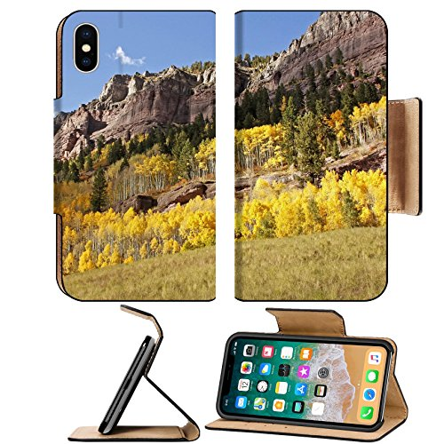 MSD Premium Apple iPhone X Flip Pu Leather Wallet Case IMAGE ID 20851531 Scenic near Telluride Uncompahgre National Forest Colorado USA (Telluride Leather)