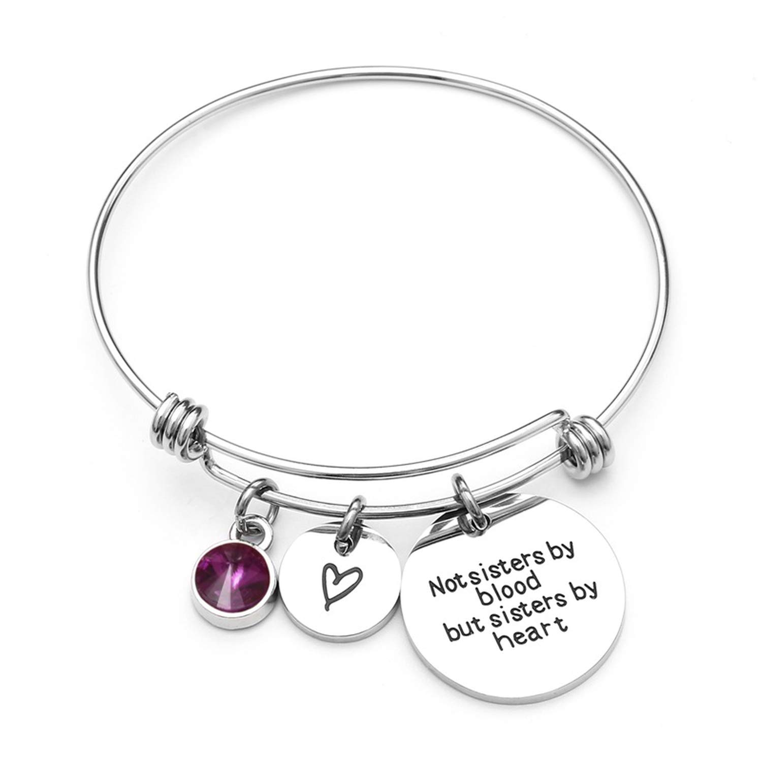 DLNCTD Birthstone Charm Bracelet for Women Stainless Steel Friendship Bangle Bracelet with Quote Sister,February,China