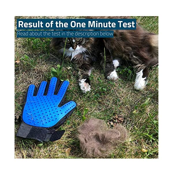 Pet Grooming Glove for Cats and Dogs - Deshedding Brush Glove for Easy Hair Removal. Hands On Grooming Mitt. A Joy Both for The Animal and The Owner. 6