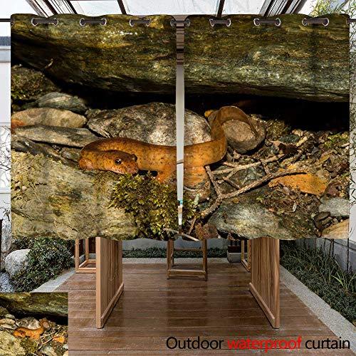 WinfreyDecor Home Patio Outdoor Curtain Northern Spring Salamander W96 x L72 ()