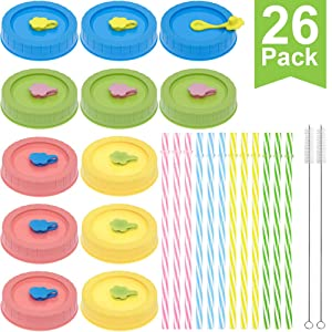 Regular Mouth Mason Jar Lids with Straw Hole/Plastic Straws/Silicone Stoppers/Silicone Rings/Cleaning Brush, Rust-proof, BPA Free Plastic Canning Lids, Great for Drinking & Food Storage(26 Pack)