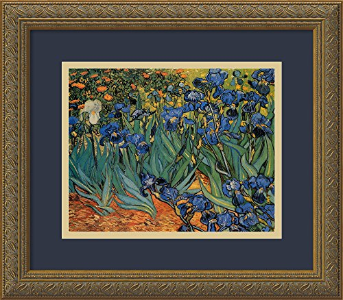 Framed Art Print, 'Irises In The Garden, 1889' by Vincent van Gogh: Outer Size 16 x 14