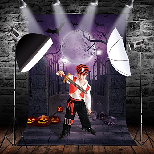 OurWarm 5 x 7 FT Halloween Photo Backdrop Haunted House Background Cloth Photography Background for Halloween Party Decoration