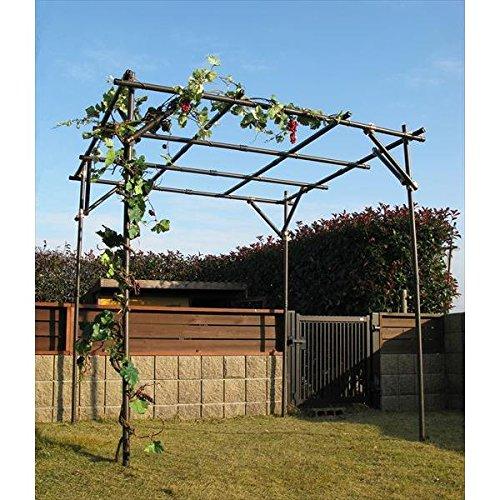 第一ビニール:ガーデンアグリパイプ果樹棚セット B012SCOTJA