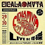 CICALA-MVTA結成20周年記念 LIVE at 磔磔
