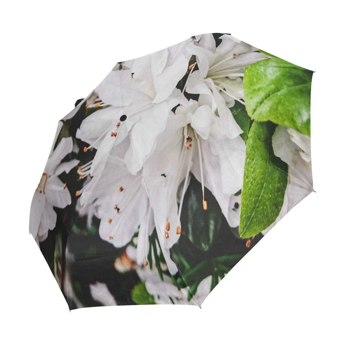 c9412e512a46 Amazon.com: Umbrella White Flowers Golf Travel Sun Rain Windproof ...