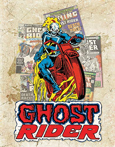 "Desperate Enterprises Ghost Rider - Cover Splash Tin Sign, 12.5"" W x 16"" H"