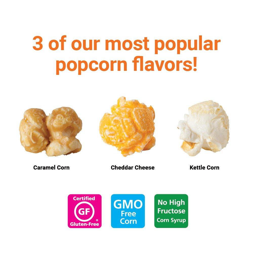Popcornopolis Gourmet Popcorn 2 Gallon Tin - Classic by Popcornopolis (Image #3)