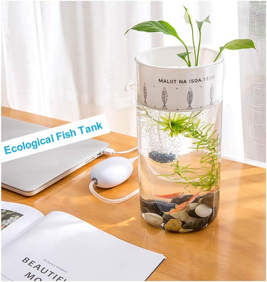 E & M ELECTRIC & MAGIC Self Cleaning Fish Tank Plant Hydroponics Mini Ecological Aquarium Decoration Office Home