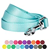 Blueberry Pet 19 Colors Durable Classic Dog Leash 5 ft x 5/8'', Mint Blue, Small, Basic Nylon Leashes for Dogs