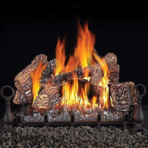 gas fireplace conversion kit - 6