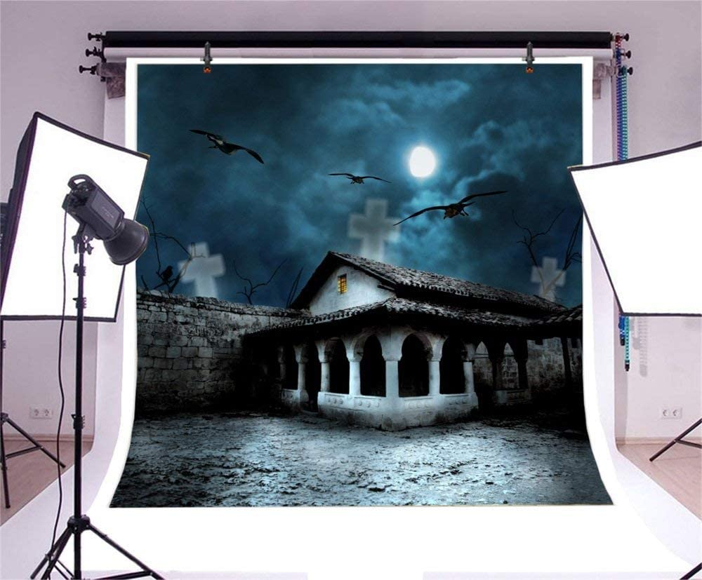 GoHeBe Halloween Theme Backdrop 10x10ft Vinyl Photography Background Gloomy Moonlight Haunted Old Temple Faint Cross Shadows Crow Weird Birds Trick or Treat Party Horror Night Gathering Baby Shoot