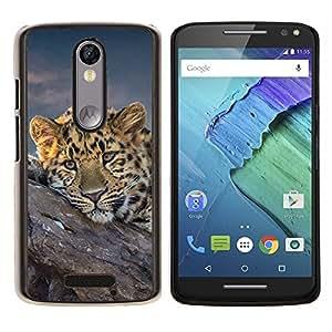 """Be-Star Único Patrón Plástico Duro Fundas Cover Cubre Hard Case Cover Para Motorola Droid Turbo 2 / Moto X Force ( Guepardo africano del gato grande"""" )"""