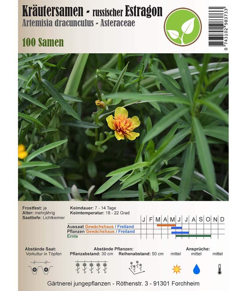 "russischer Estragon ""artemisia dracunculus"" Samen Kräutersamen"