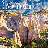 New Mexico, Wild & Scenic 2018 7 x 7 Inch Monthly Mini Wall Calendar, USA United States of America Southwest State Nature