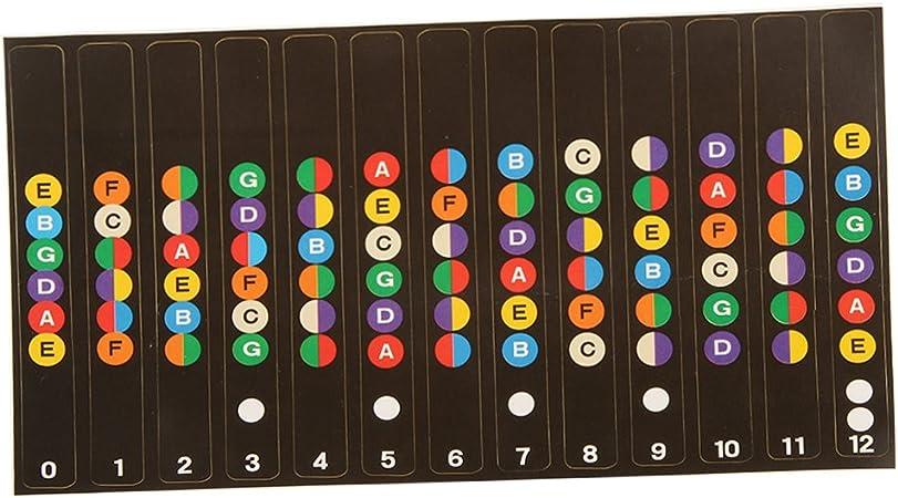 1pc Etiquetas de Guitarra Notas Diapasón Traste Mapade Engomada para el Principiante a Aprender: Amazon.es: Instrumentos musicales